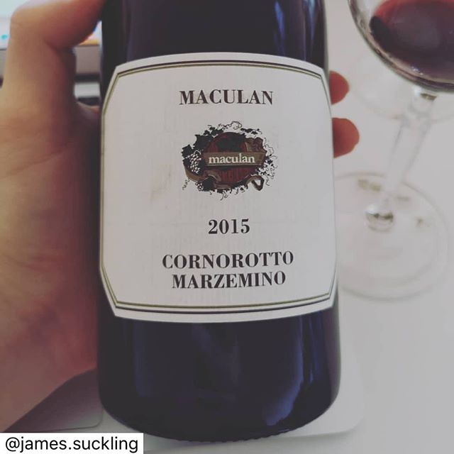 Check out the Maculan Marzemino 2015 vintage! 🍷 Repost from the great @james.suckling ➡️ Do you know this wine from @maculanwine made from dried grapes of an obscure variety called Marzemino in Veneto? Amazing value wine! . . . #veneto #amarone #wine #italianwine #vinoitaliano #vino #winetasting #campania #summer #winestagram #wineaddict #wineblogger #winegeek #winecellar #winelovers🍷 #winelover #wineporn #wineoclock #winetravel #vinoveneto #Marzemino #Maculan #Breganze #Venetowines #drinkwellwithCBT