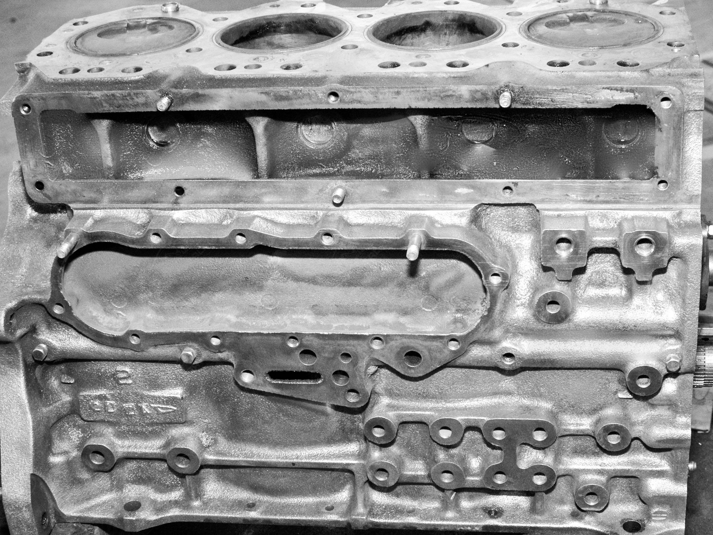 eucalyptus build_070.jpg