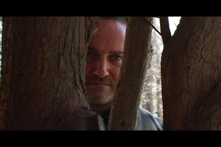 def in tree.jpg