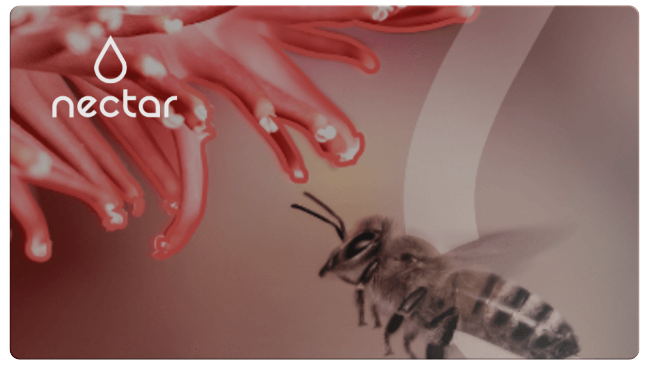 Nectar - Transforming the future of asset management behind a new name &brand identity.
