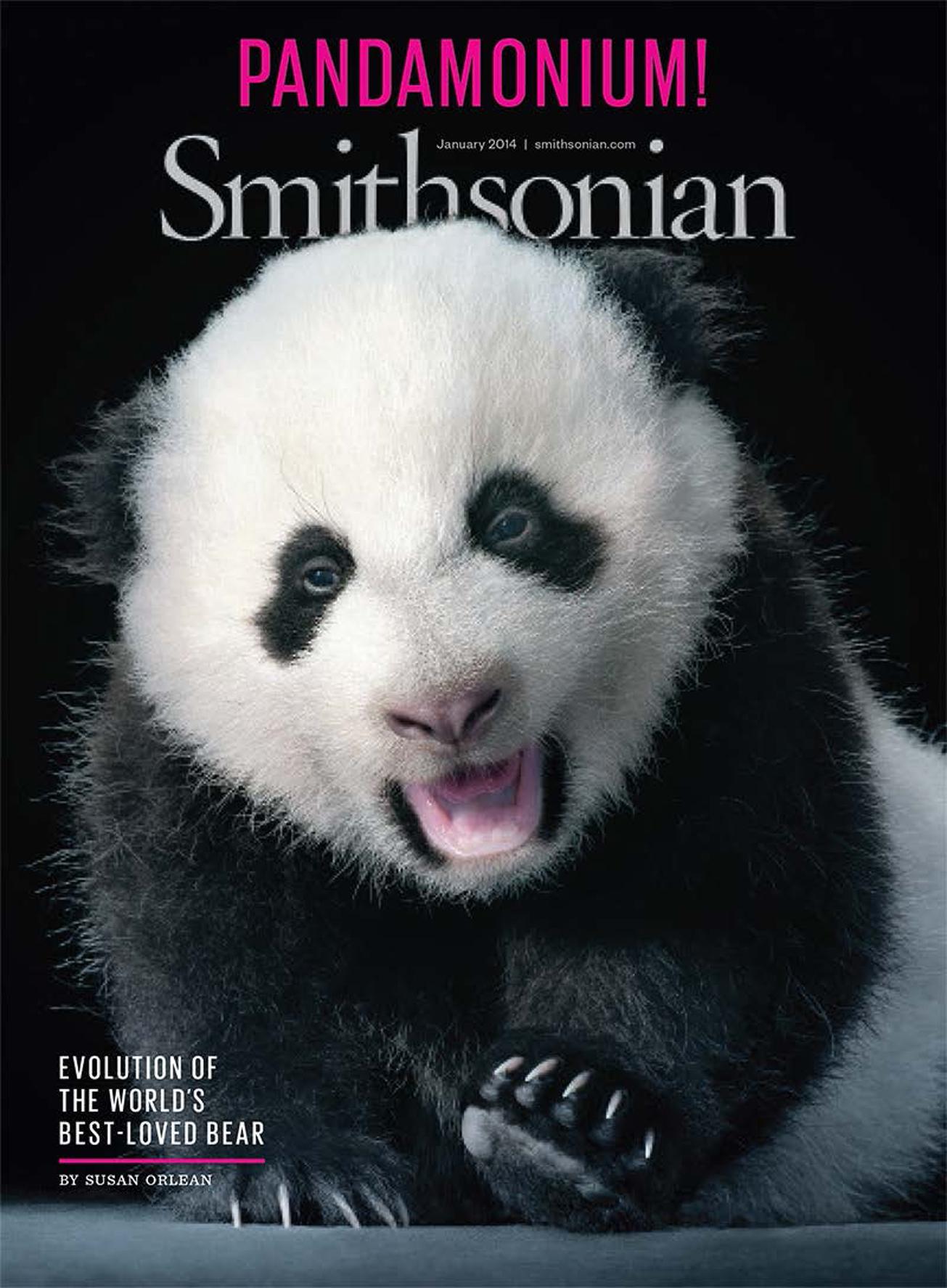 Panda!_Page_1 copy.jpg