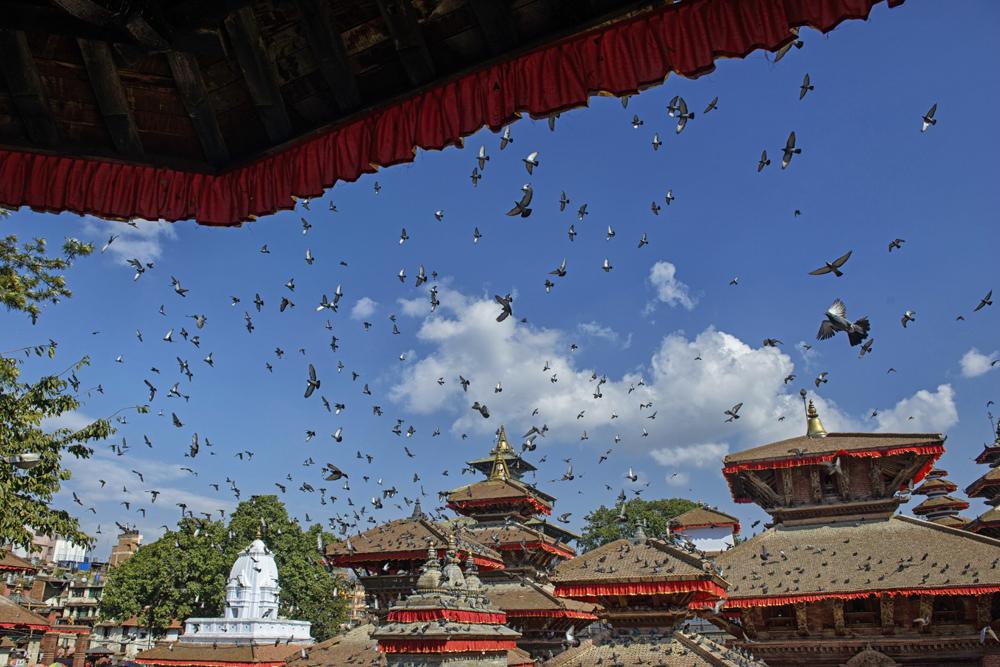 Peter Mercieca Nepal  (3).jpg