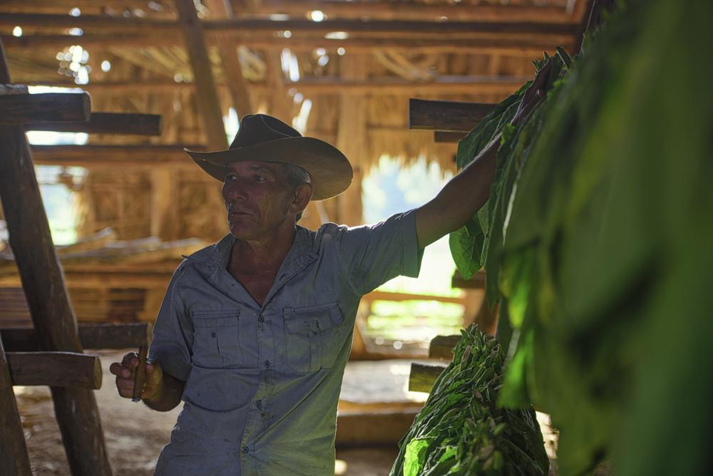 Peter Mercieca Cuba   (5).jpg