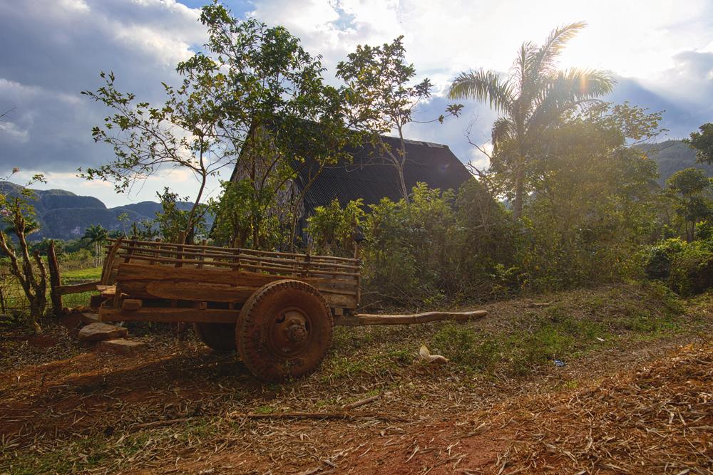 Peter Mercieca Cuba 0453 .jpg