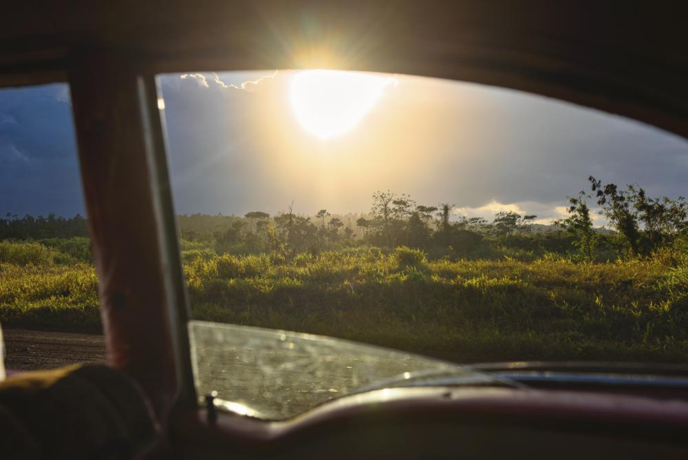 Peter Mercieca Cuba 7353 .jpg