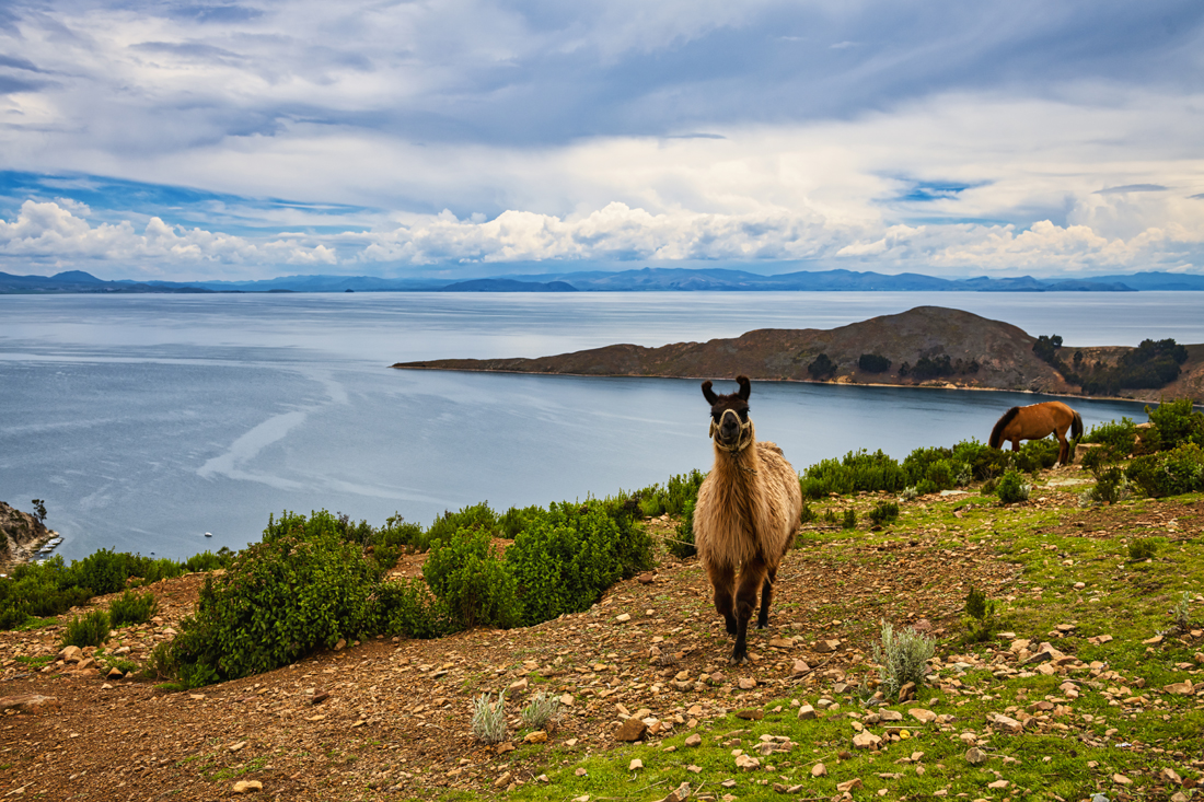 Bolivia Titicaca 070218 3362.jpg