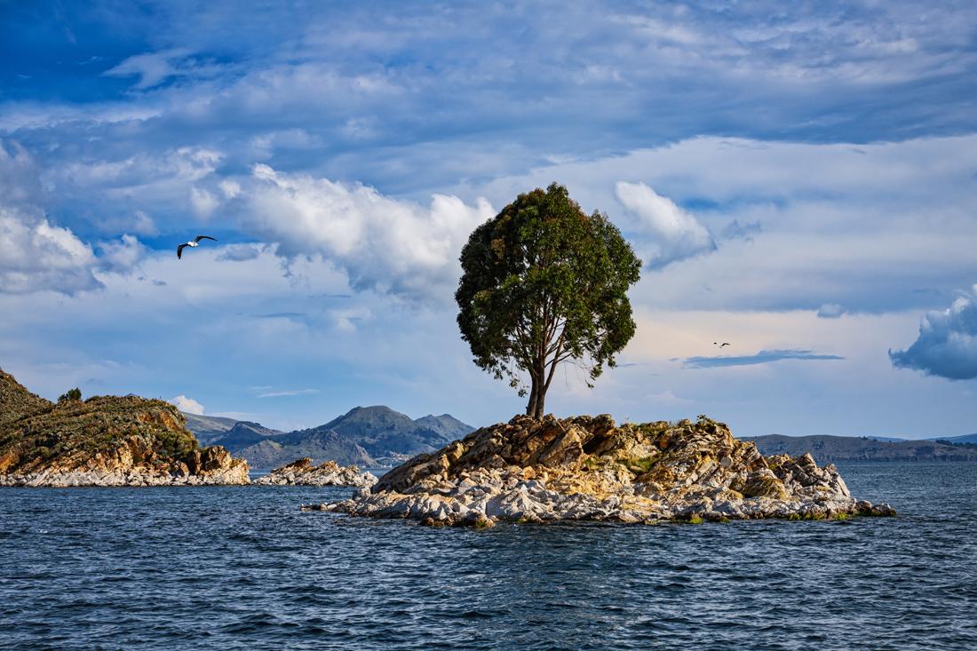 Bolivia Titicaca 070218 3501.jpg