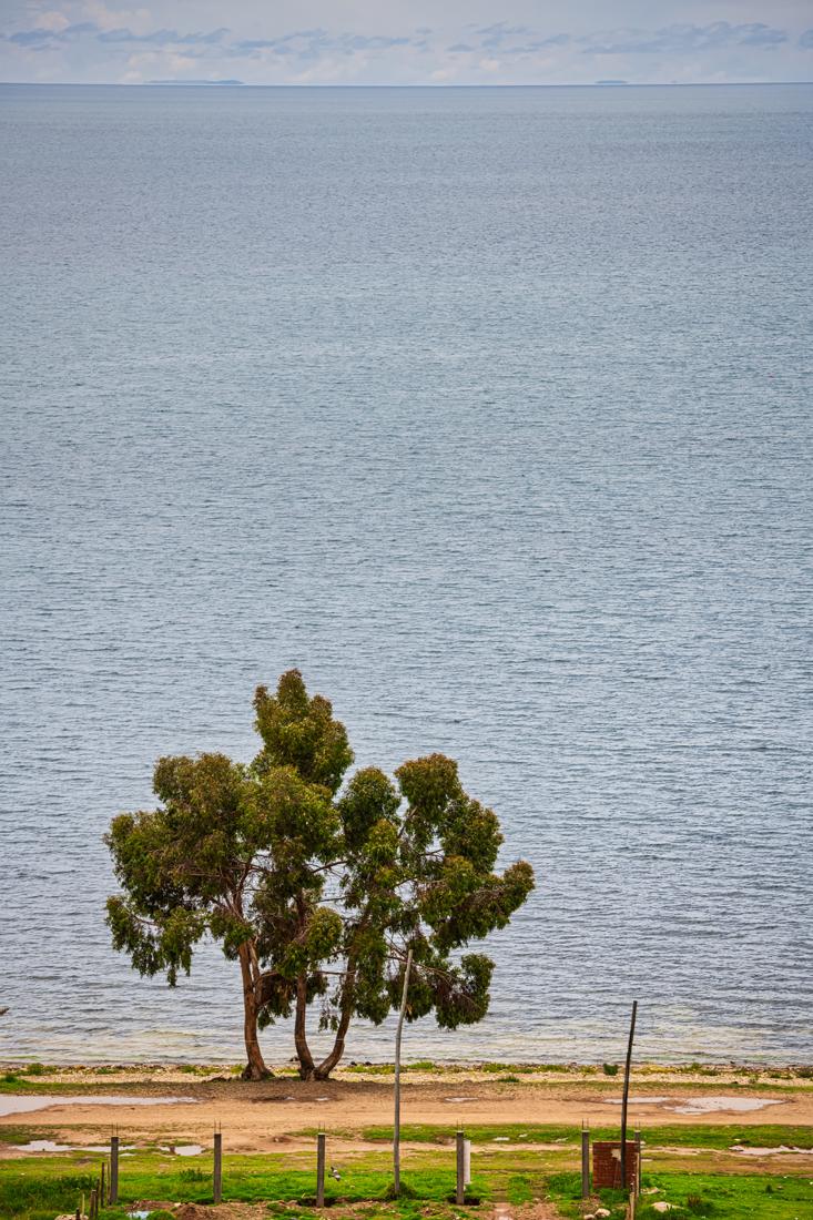 Bolivia Titicaca 080218 3741.jpg