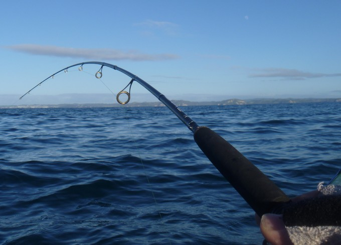 RECREATIONAL FISHERMEN
