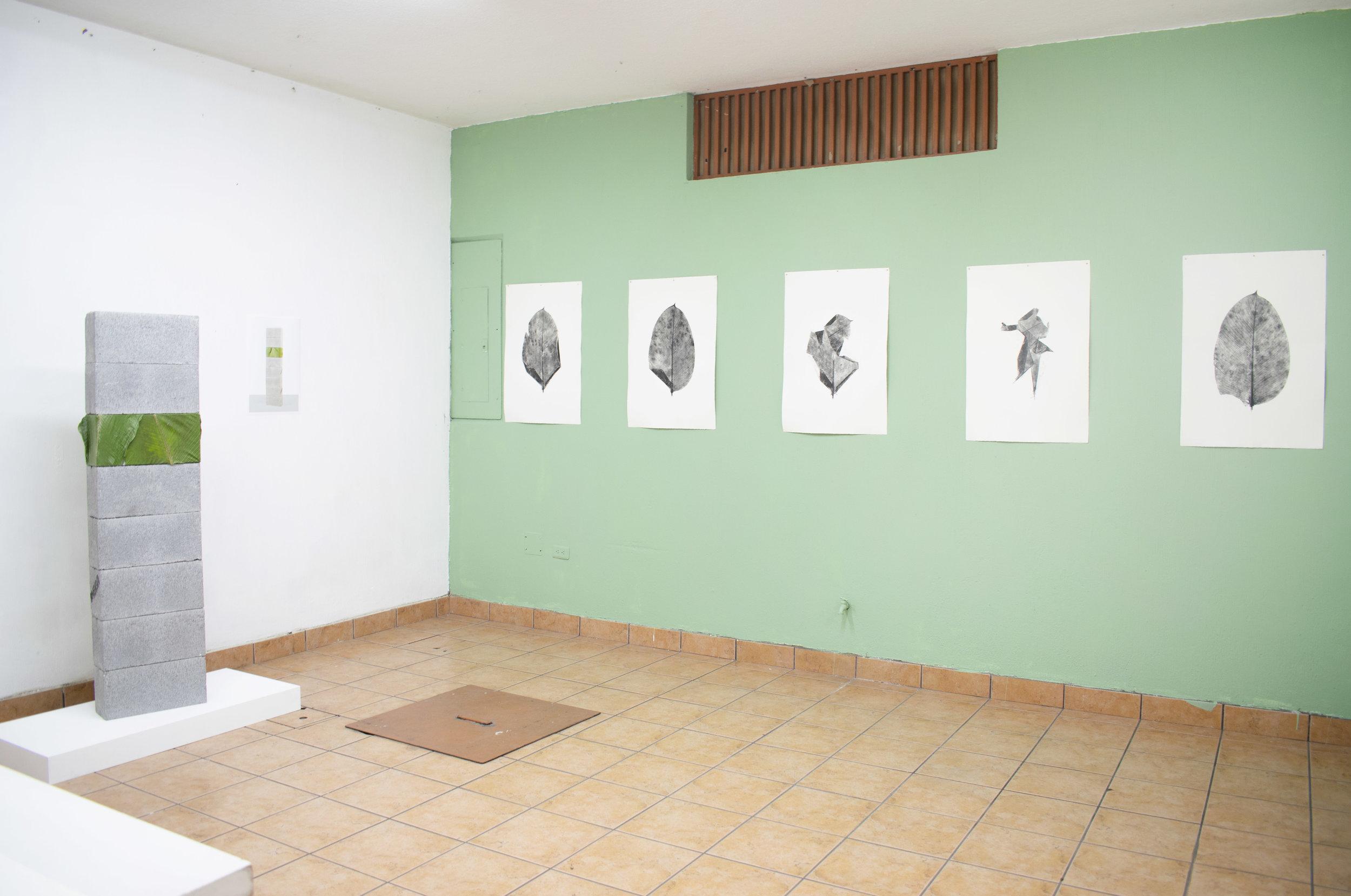 yavheni de leon - project room 4.jpg