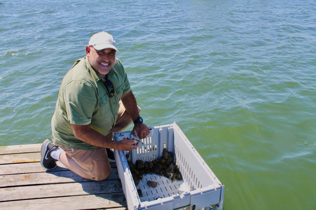 "Jamie Bassett sorts ""pre-molt"" crabs in Chatham, Massachusetts. Photographed by Mary Parks."