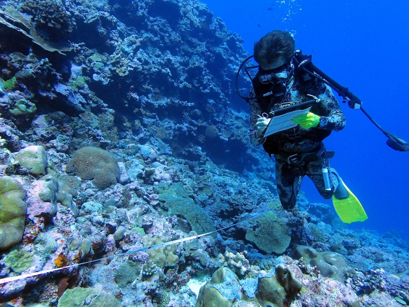 Steven Lee documenting benthic cover found at survey dive site. ©Sangeeta Mangubhai/WCS