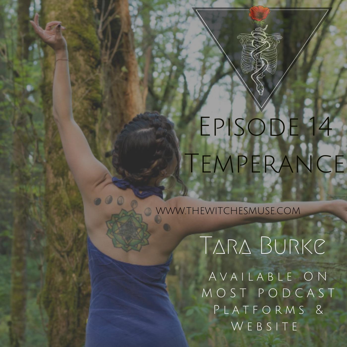 Episode Temperance 14.png