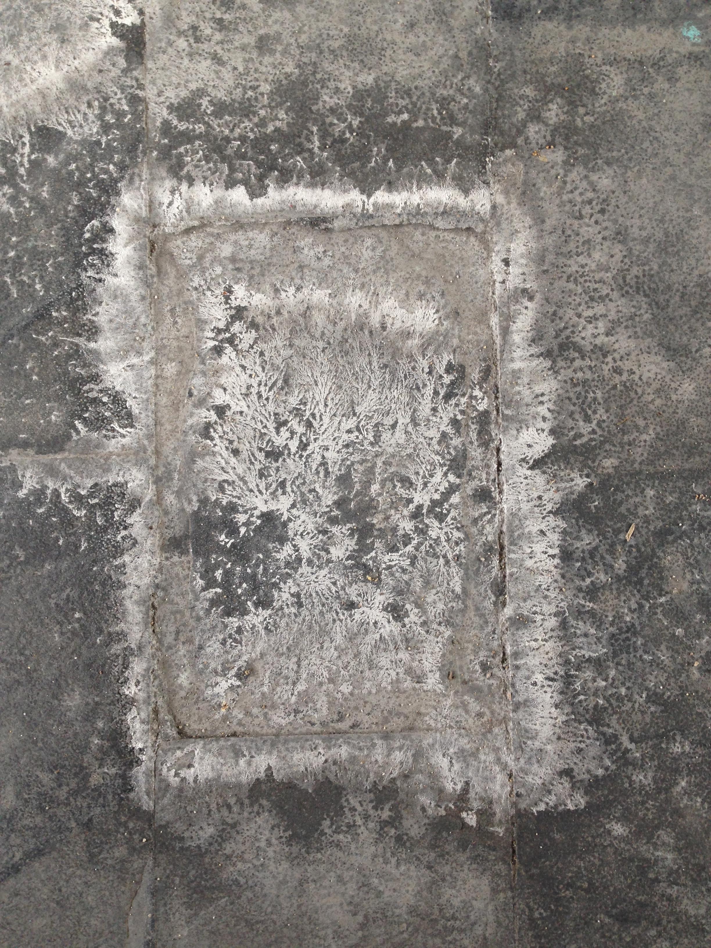 Salt Print 2.JPG