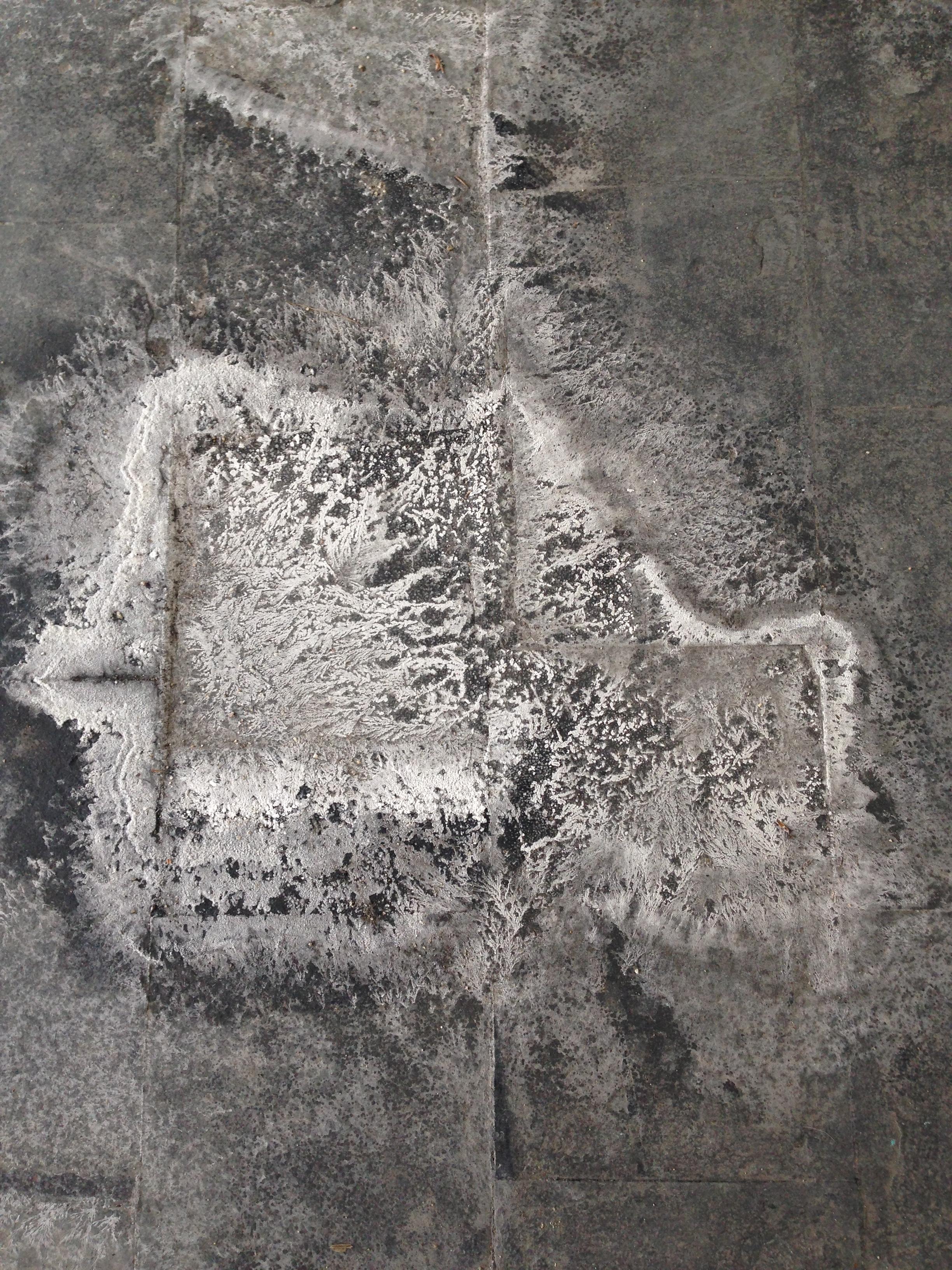 Salt Print 1.JPG