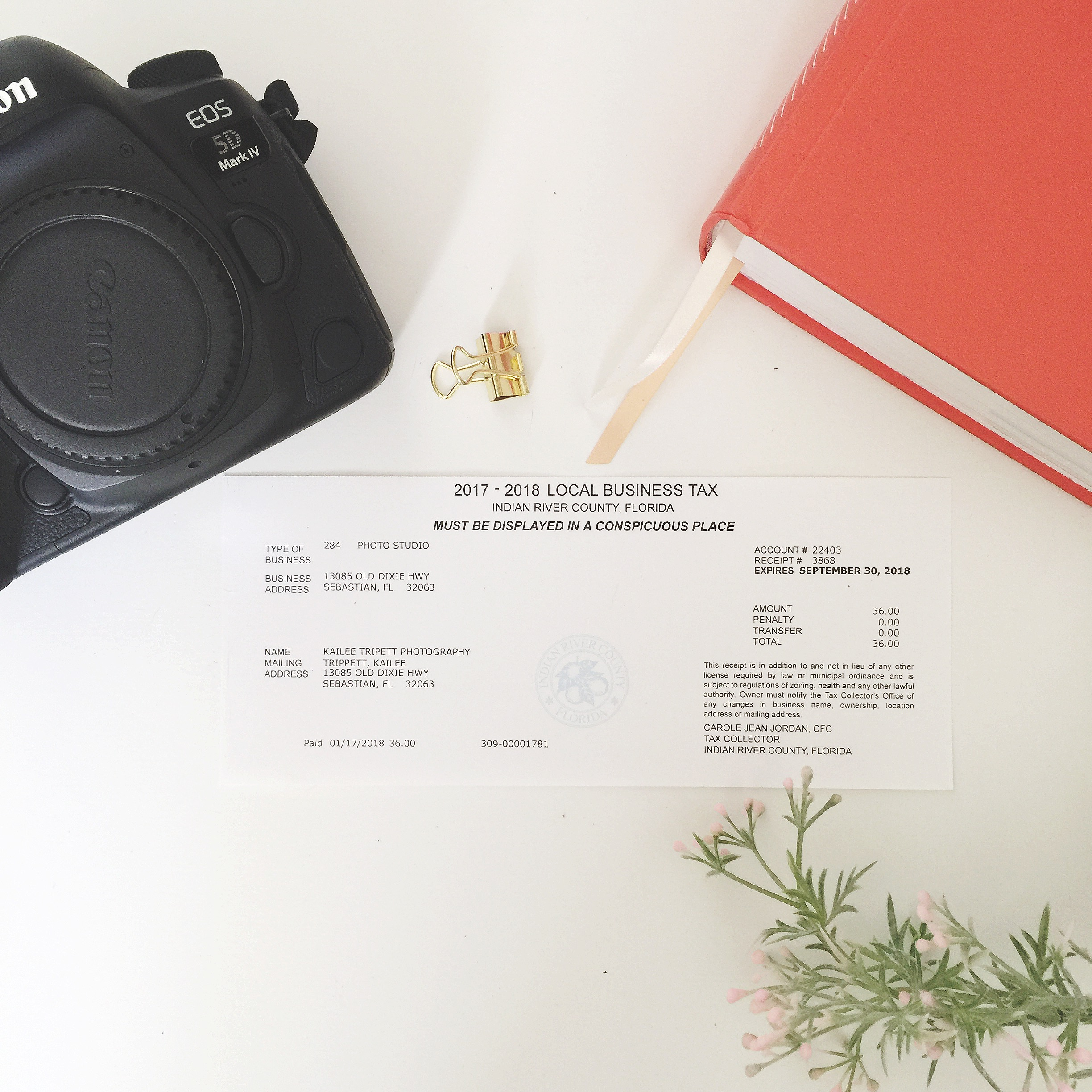 Yay! My cute little business establishment receipt I get to put on my office wall! - A flatlay was completely called for. ;)