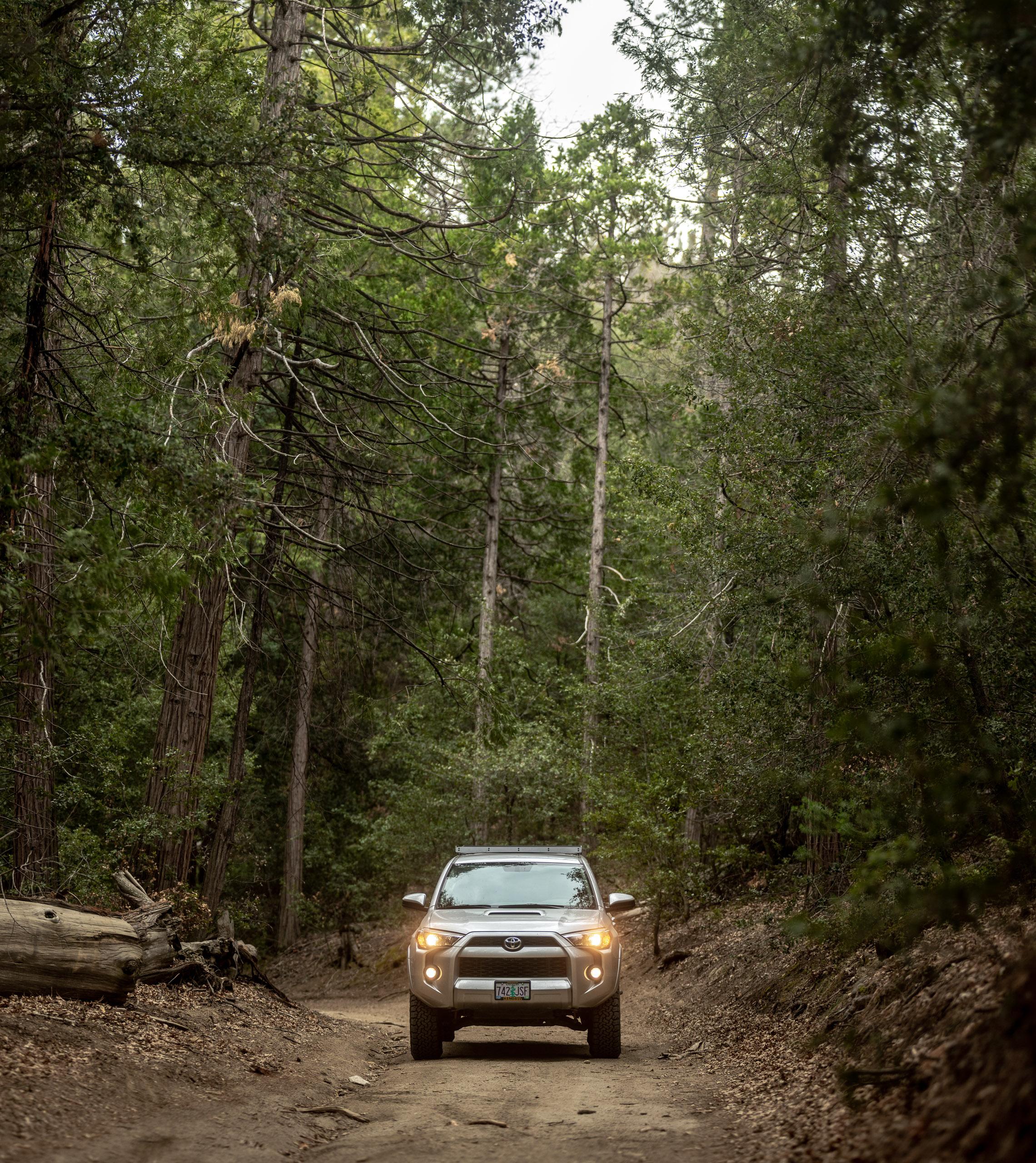 forest-toyota-4runner-dirt-road.jpg