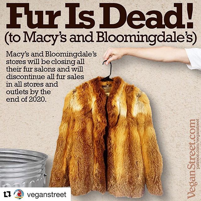 YAAASSSS!!!!! 👏🏼👏🏼👏🏼#Repost @veganstreet ・・・ In yet another milestone in the fur industry's long slide into the dustbin of history, Macy's announced Monday that it will discontinue all fur sales in all 900 of its @macys and @bloomingdales stores. Fur sales have recently been banned for the entire state of California, and many of the world's top designers have announced that they will stop working with fur. Many wonderful furry critters can breathe a little easier. We link to Macy's press release from veganstreet.com/dailymeme-10-23-19.html