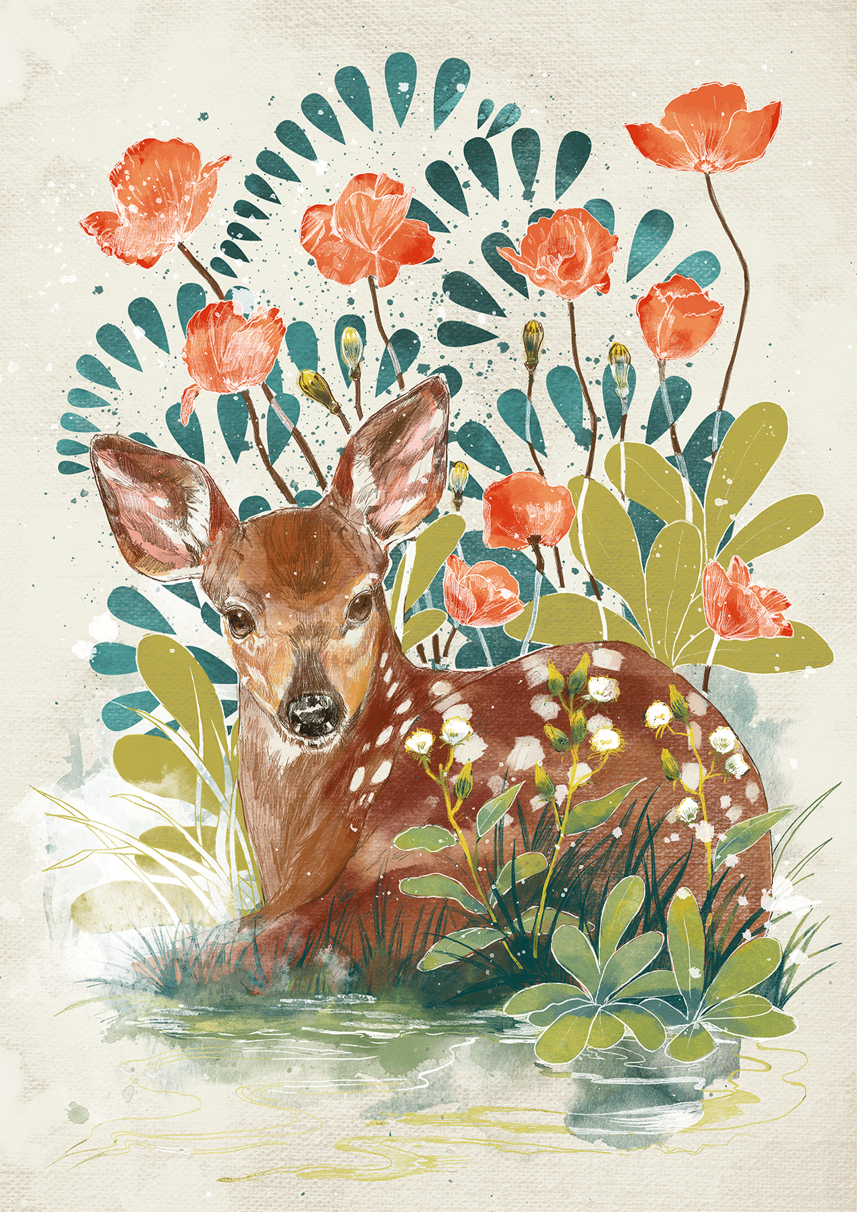 fawn.png