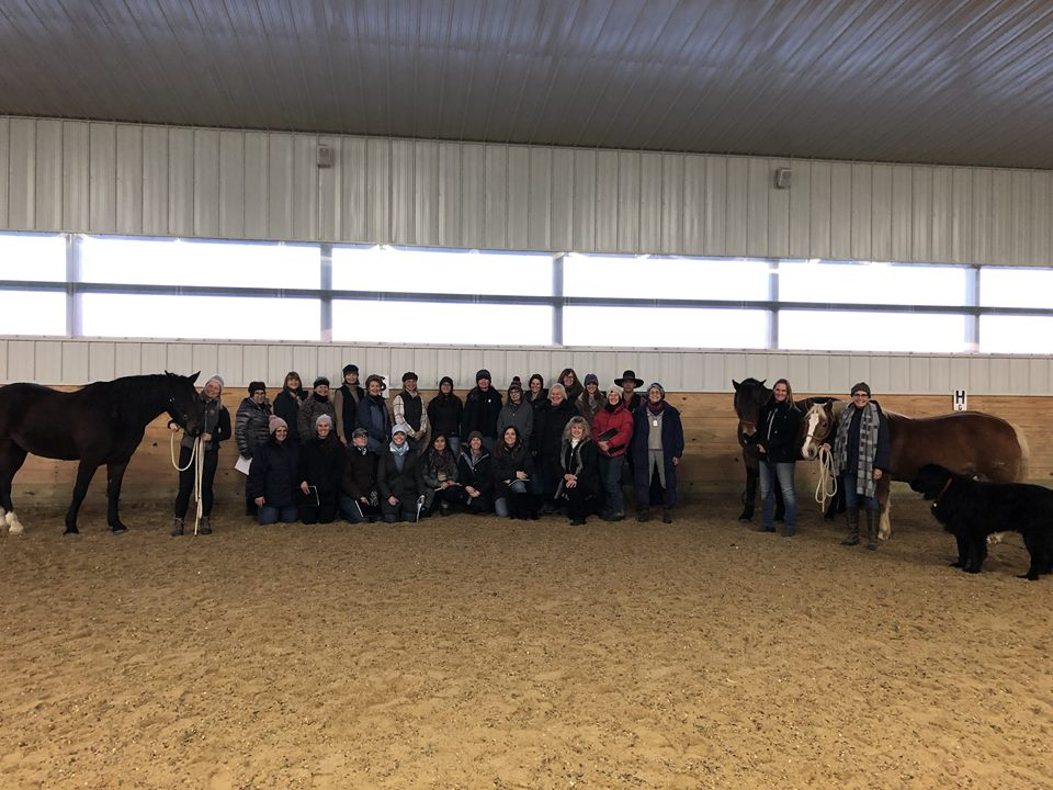 Beomor Farms Equine Biomechanics Clinic.jpg
