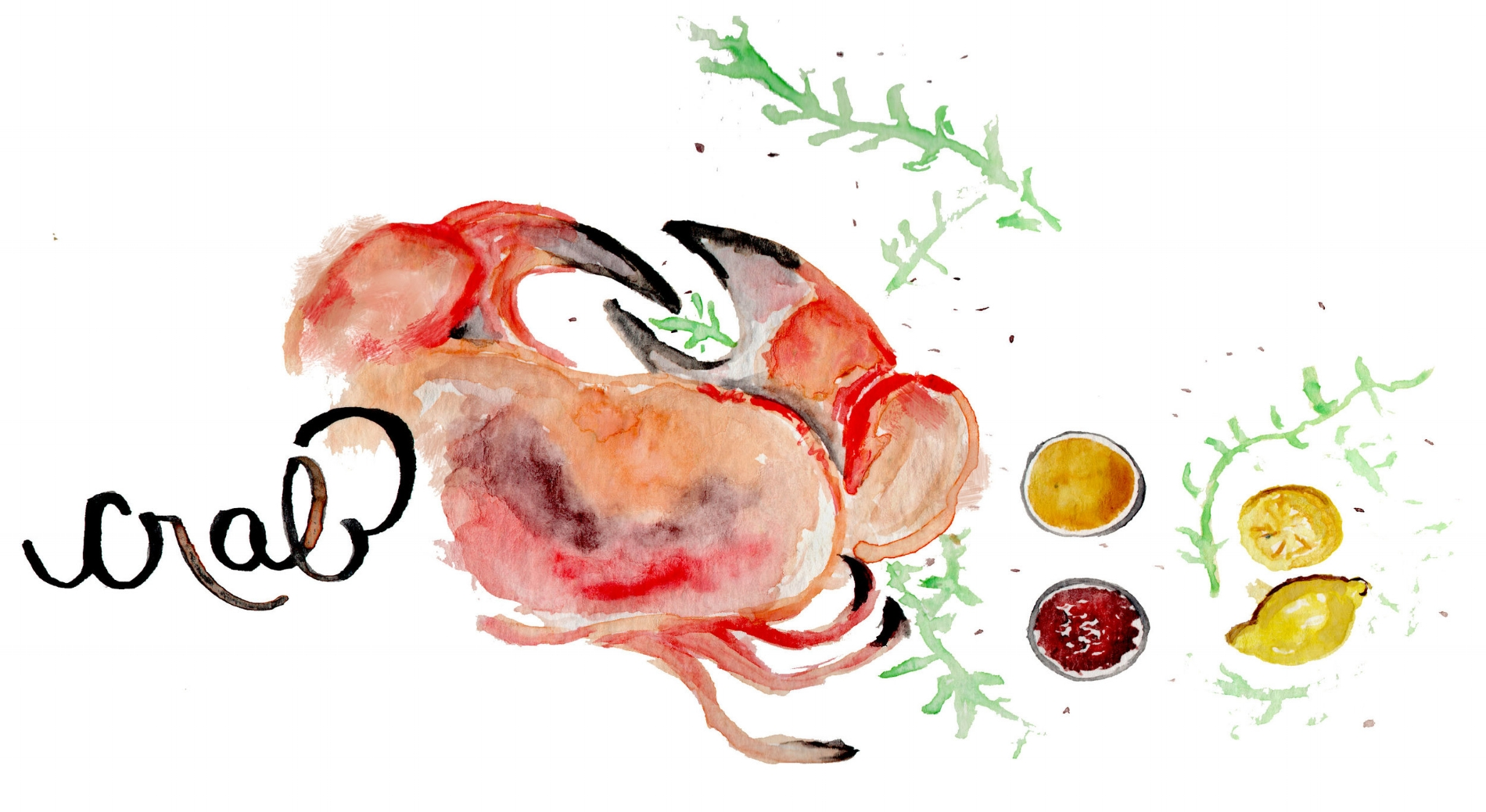 crabdrawing.jpg