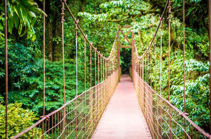 hanging-bridges-arenal-.jpg