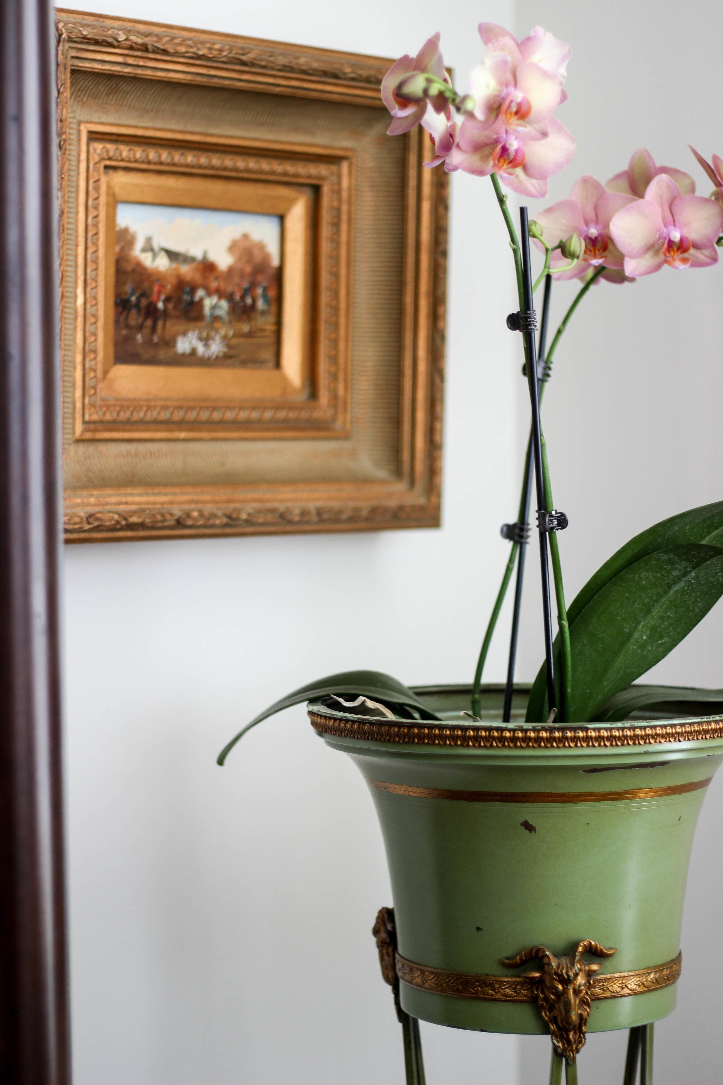 Living Room Vignette 1.jpg