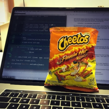 My daily coding for research practice often involves Flamin' Hot Cheetos.