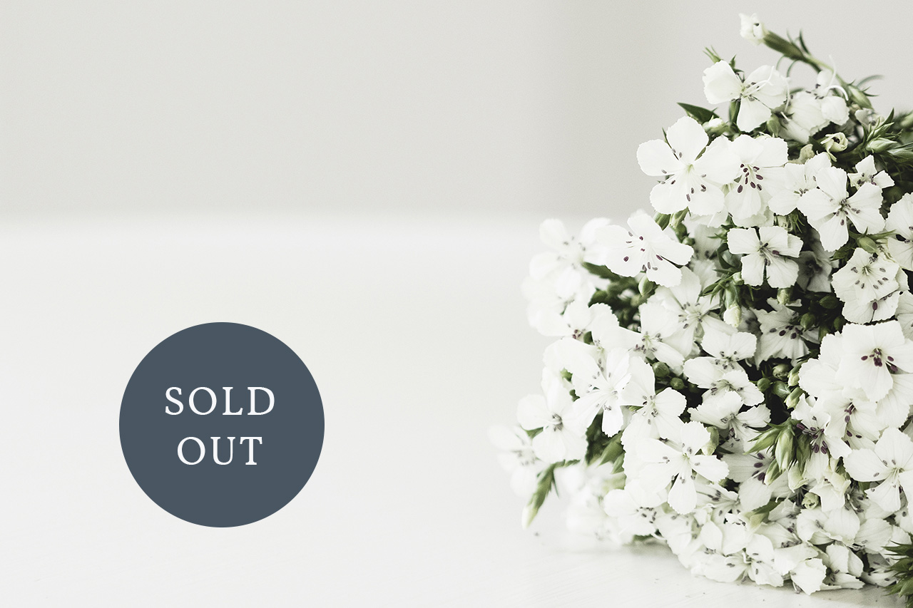 Flowers SOLD OUT.jpg