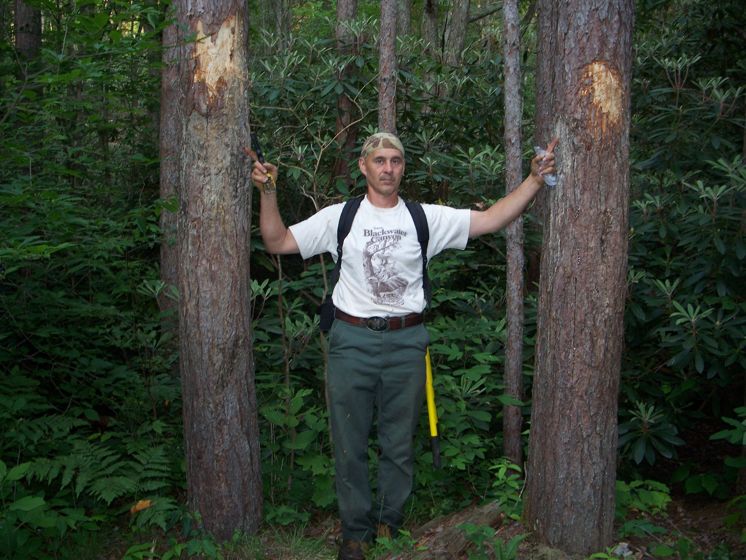 S4 TC Wood points out boar bear territorial signposts.jpg