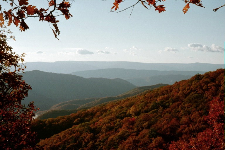 View to Ogle Creek Valley from Moosefrog Log on Allegheny Mountain - By Doug Wood