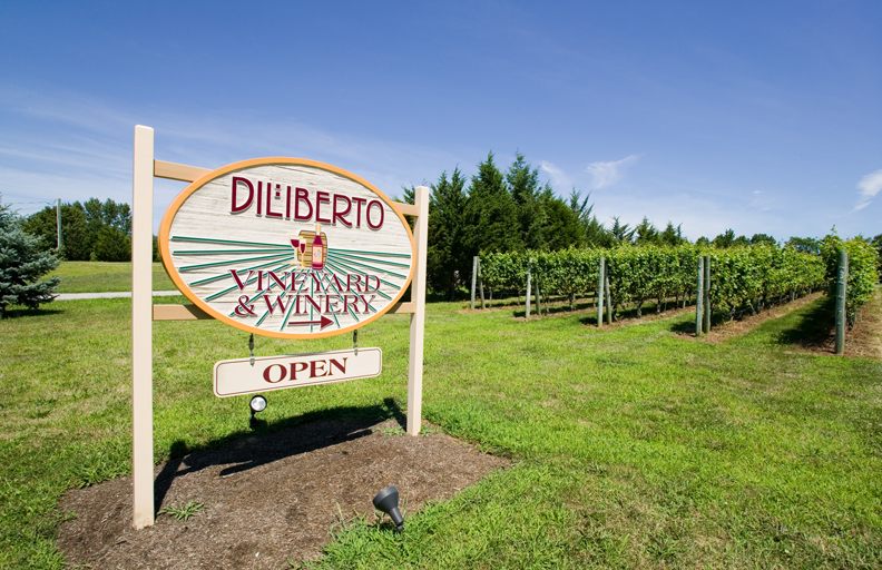 Diliberto Vineyard Winery.jpg
