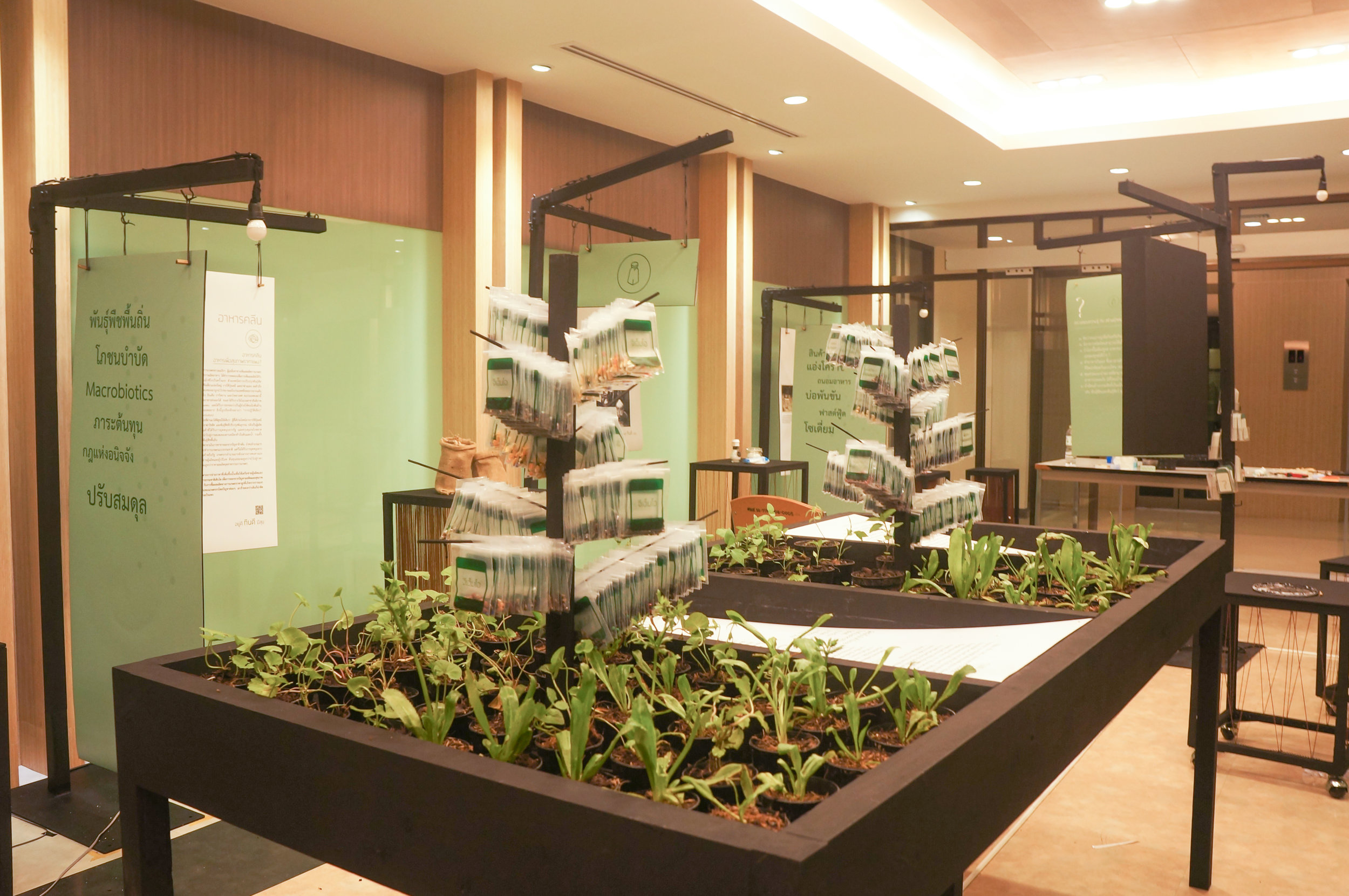 Openspace: Organic seeds at interactive exhibition on Thai health in Bangkok, Thailand