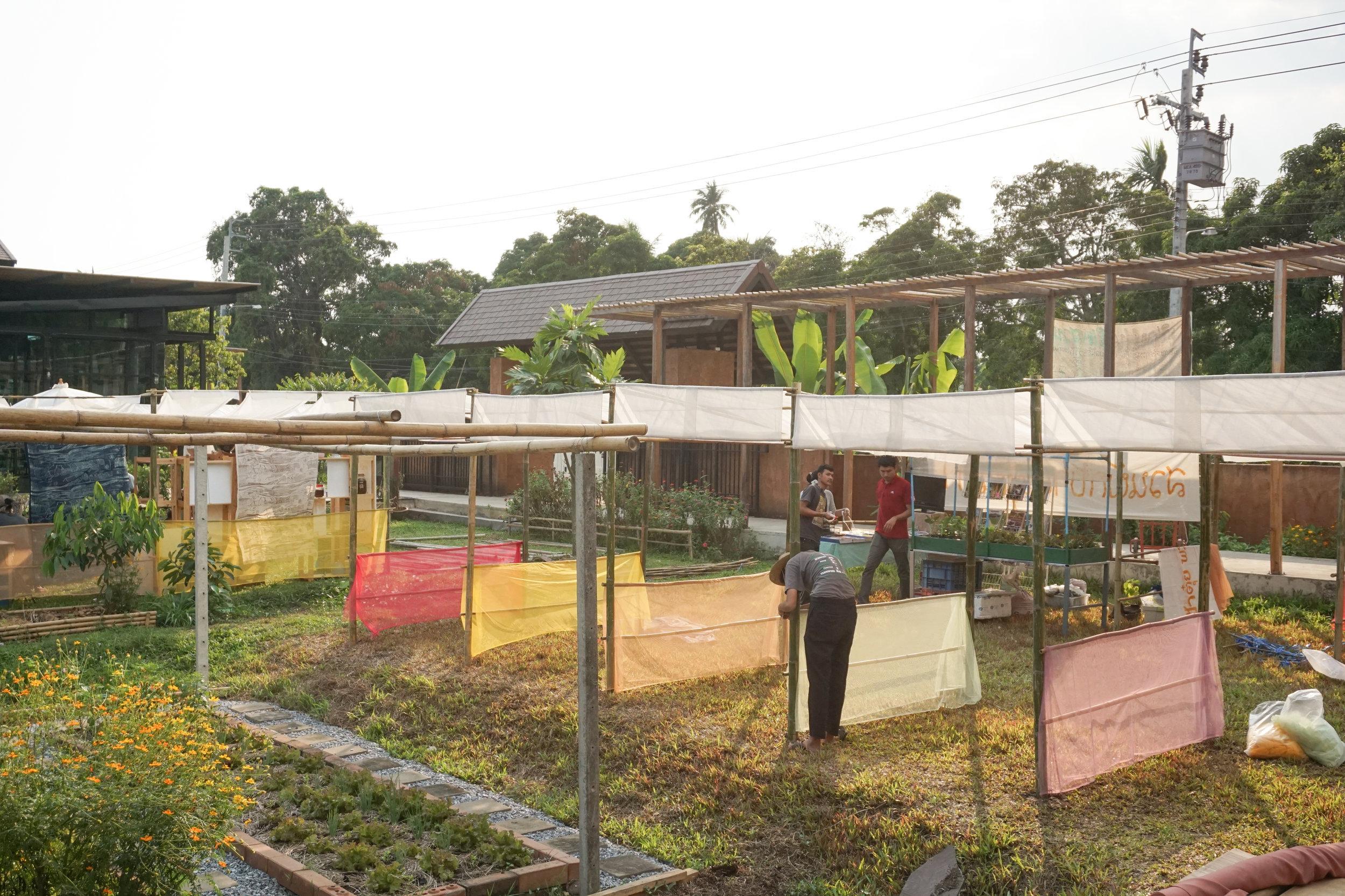 Building the Thai City Farm Festival on organic farming