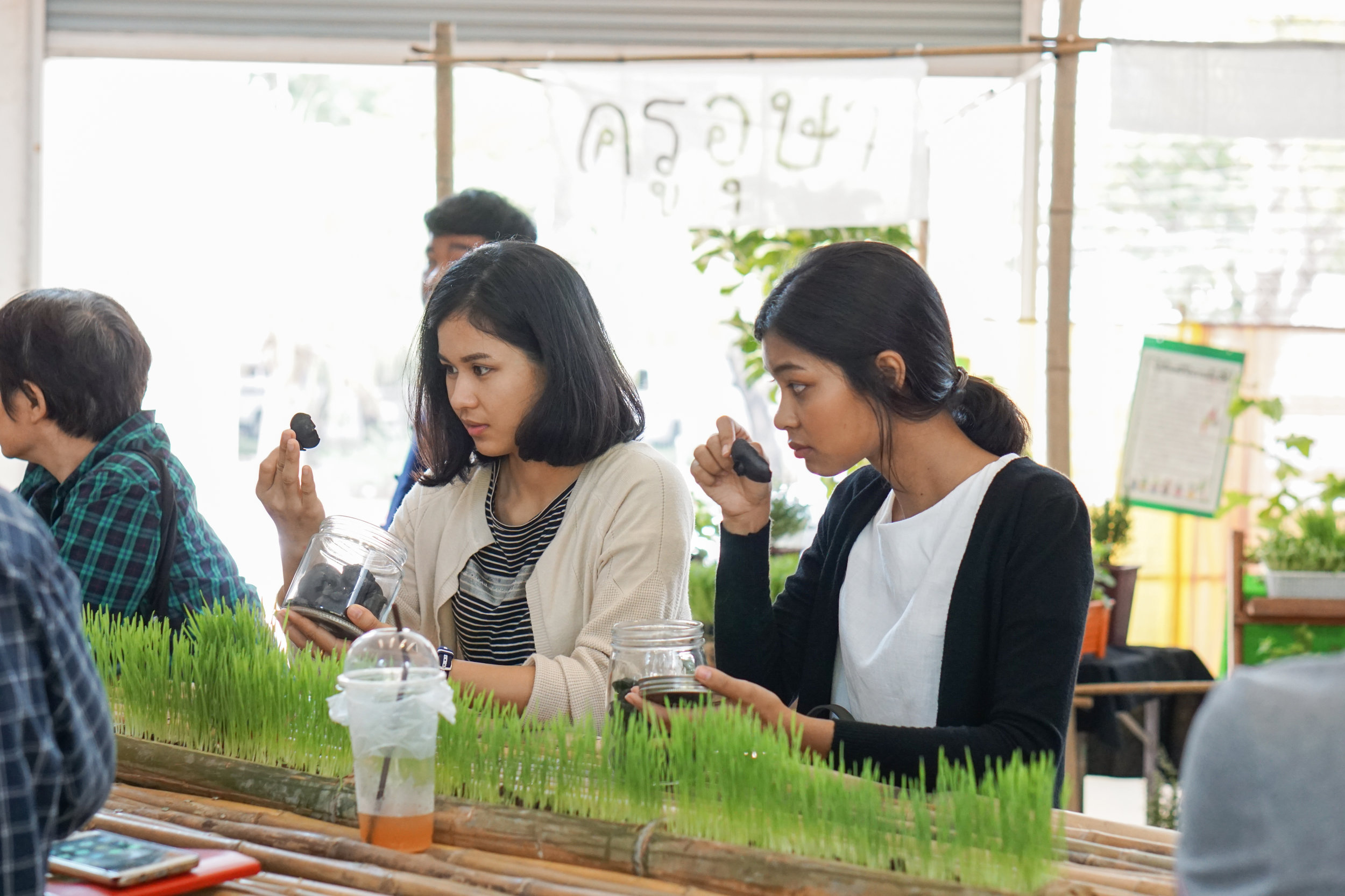 City Farming for a Sustainable City Event: Exhibition and workshops by urban farmer groups