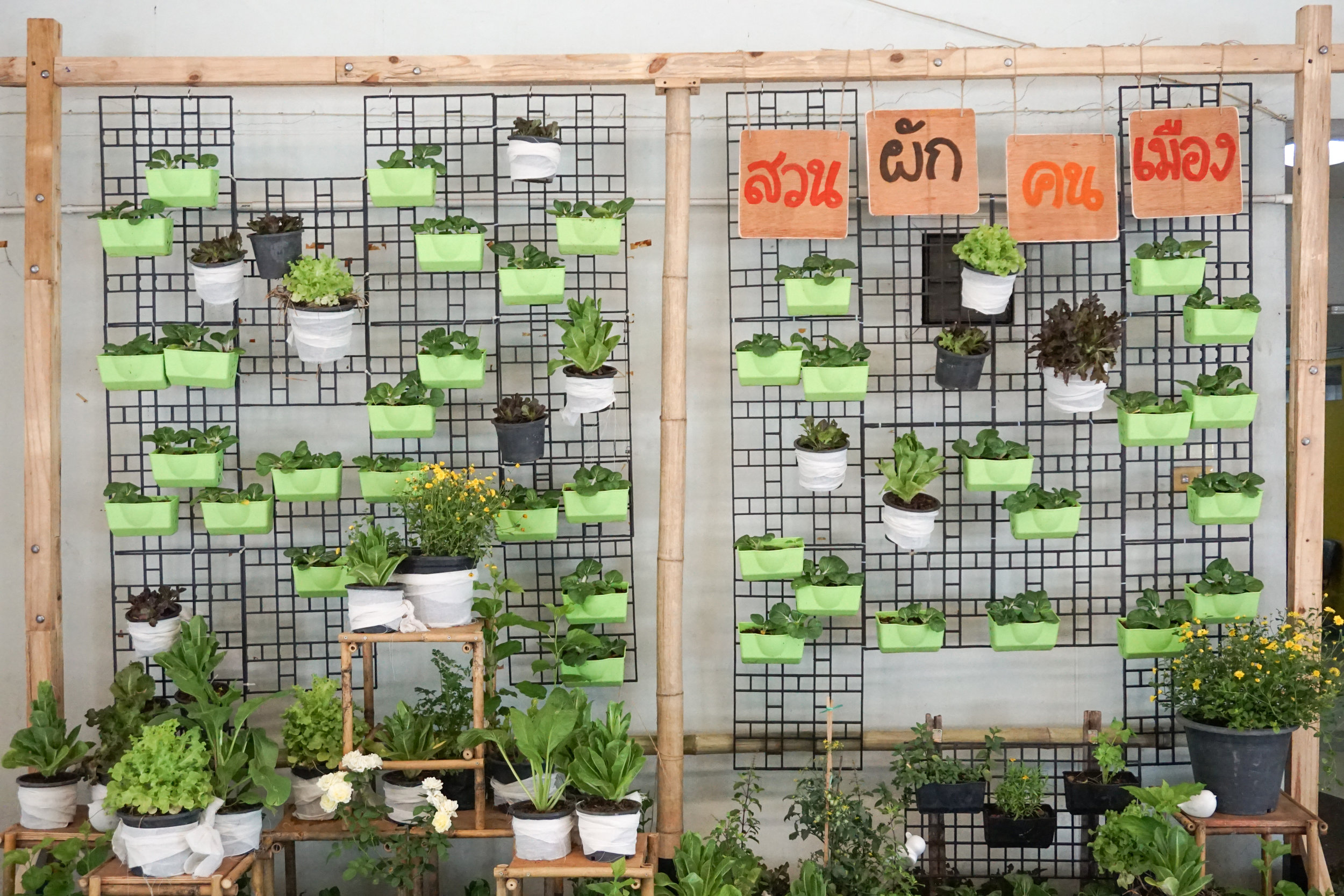 City Farming for a Sustainable City Event: The photo corner with a vertical garden