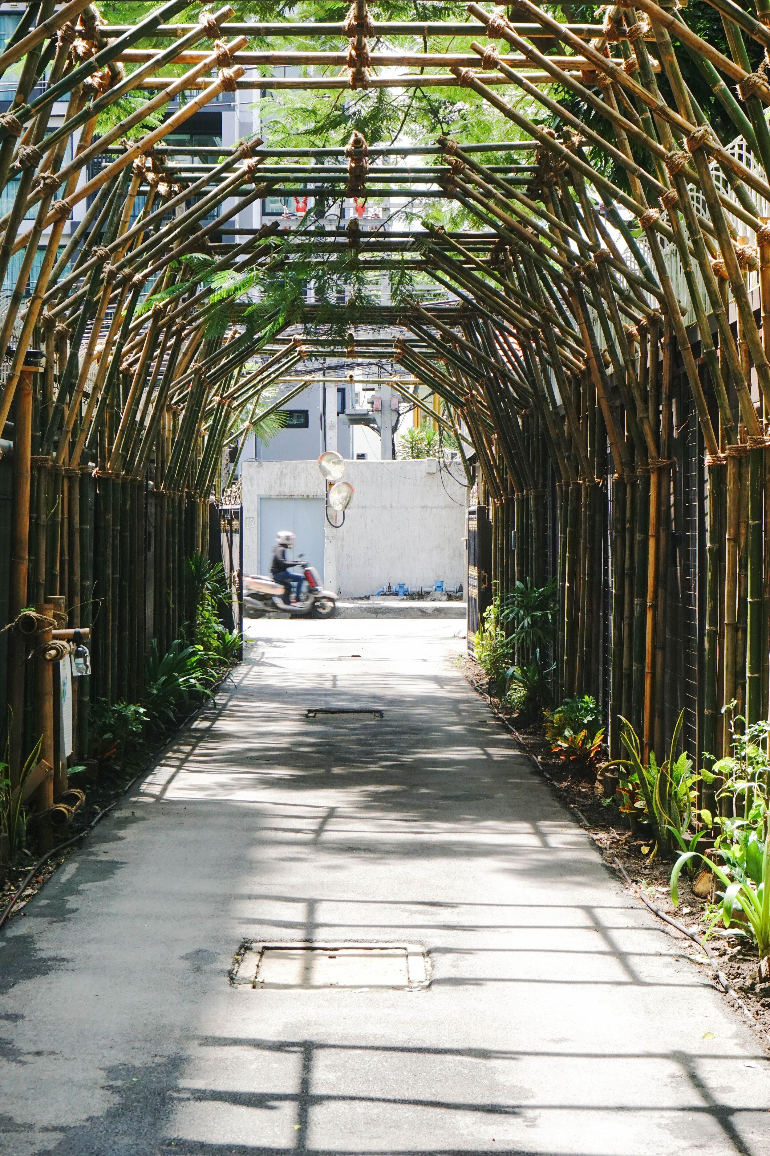Bo.lan Edible Garden: ZONE H - The Fresh Air Tunnel