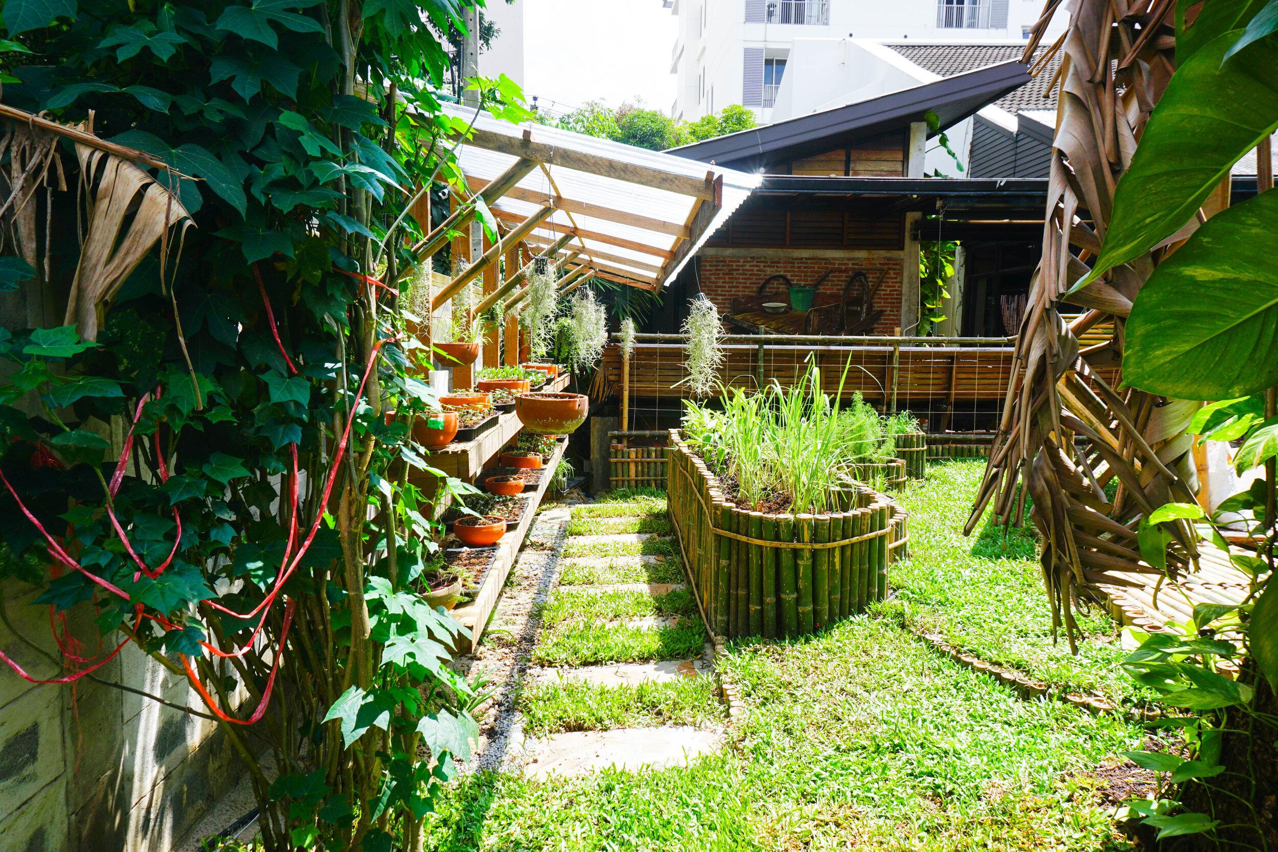 Bo.lan Edible Garden: ZONE E - The Short-term Harvest Vegetable Garden