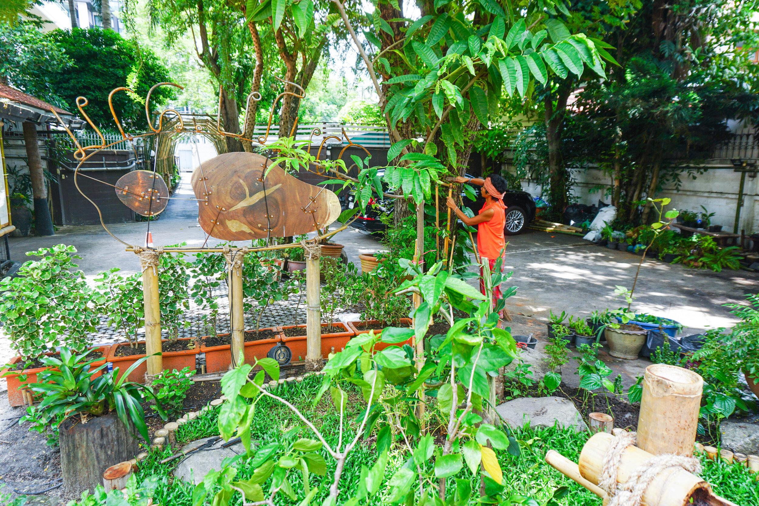 Bo.lan Edible Garden: Plan of the garden in ZONE A - The House Front Garden