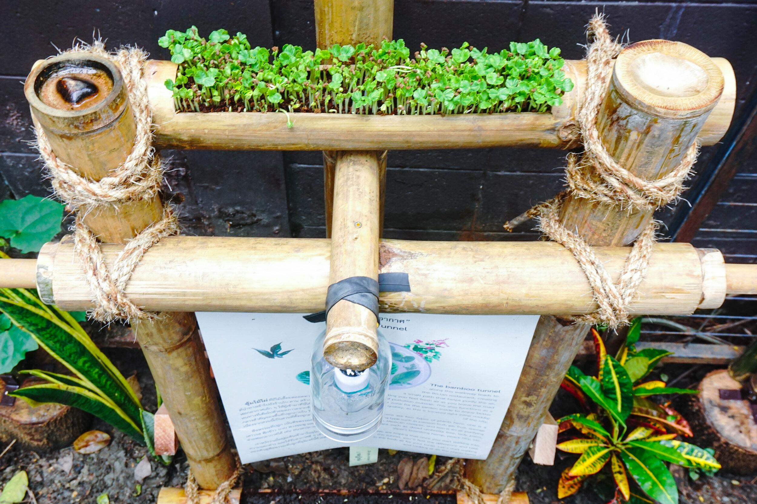 Bo.lan Edible Garden: Informative panel with micro-greens bamboo planter in ZONE H - The Fresh Air Tunnel