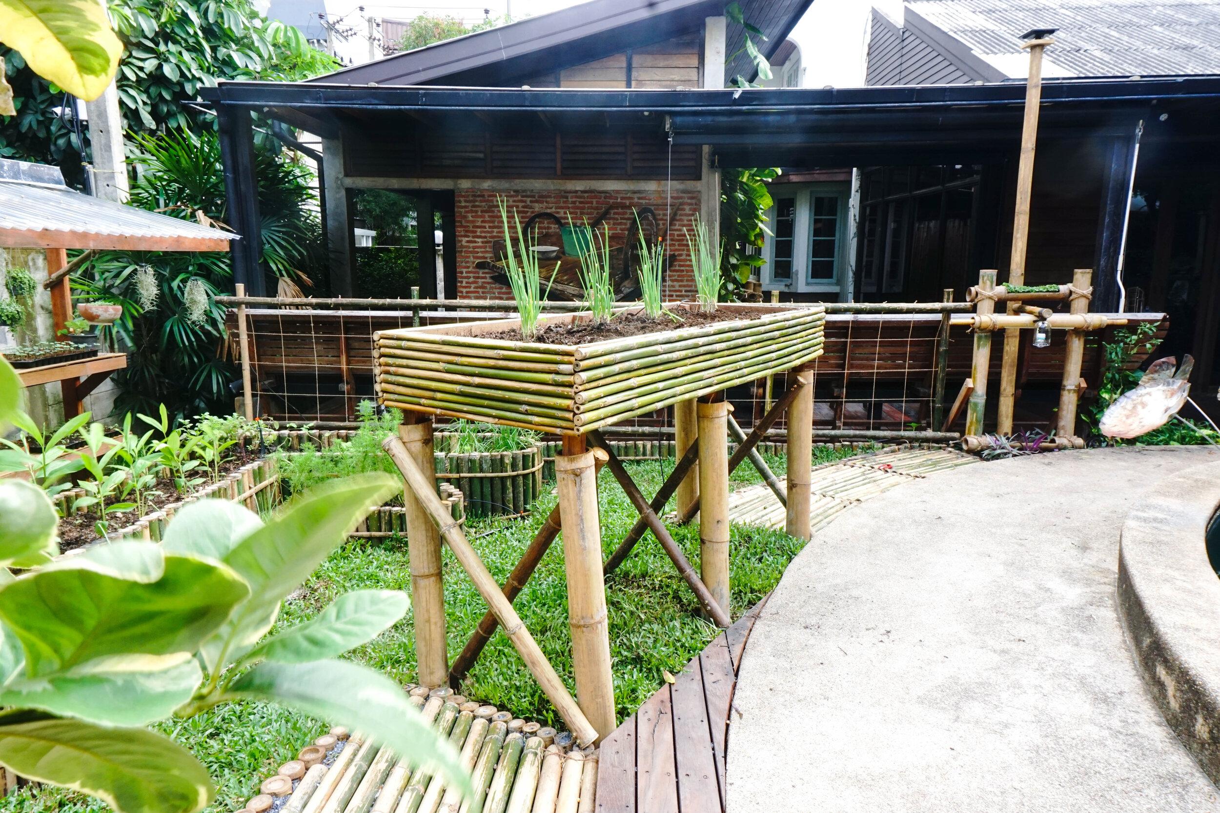 Bo.lan Edible Garden: Wheelchair accessible area in ZONE E - The Short-term Harvest Vegetable Garden