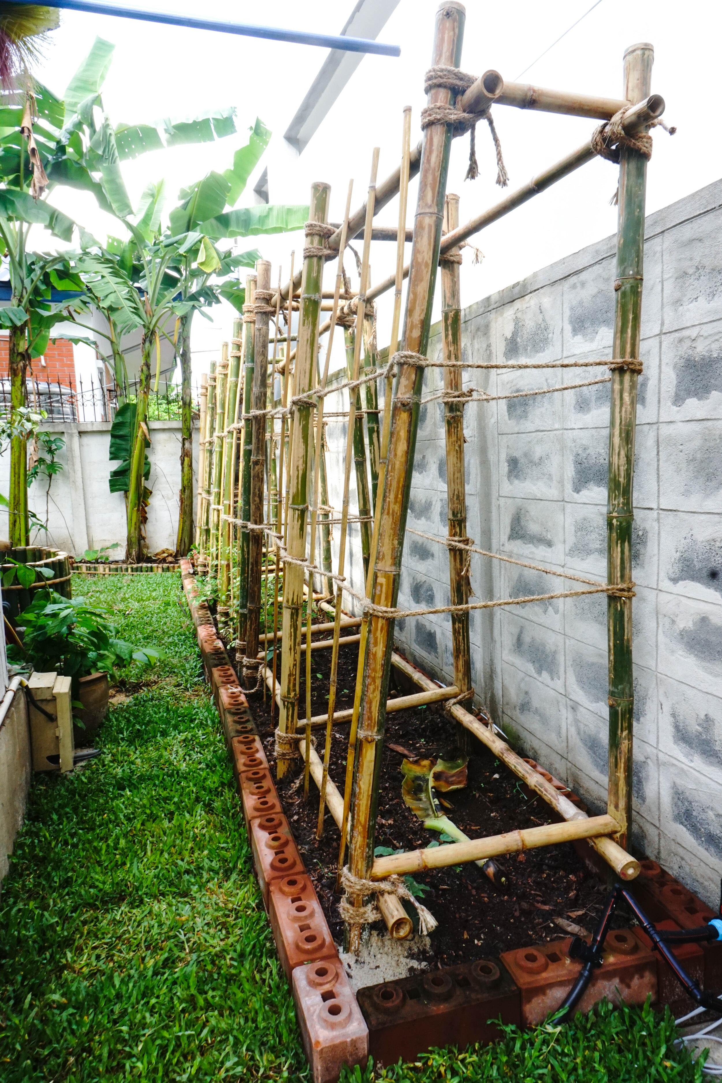 Bo.lan Edible Garden: Bamboo structure in ZONE F - The Wood & Bees Garden