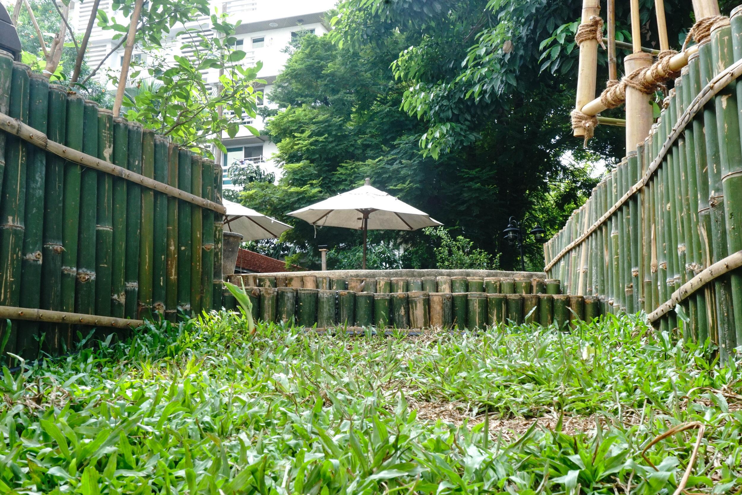 Bo.lan Edible Garden: Bamboo details in ZONE F - The Wood & Bees Garden