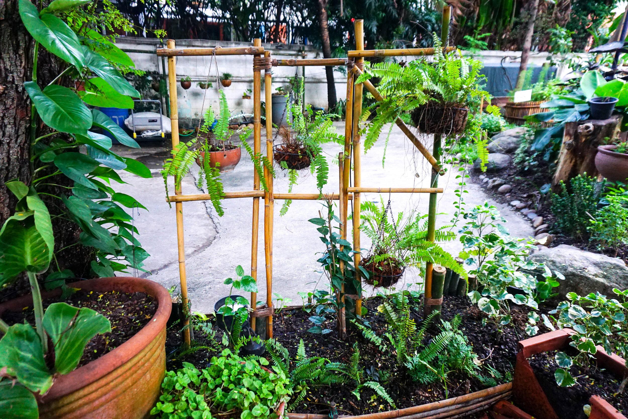 Bo.lan Edible Garden: ZONE A - The House Front Garden