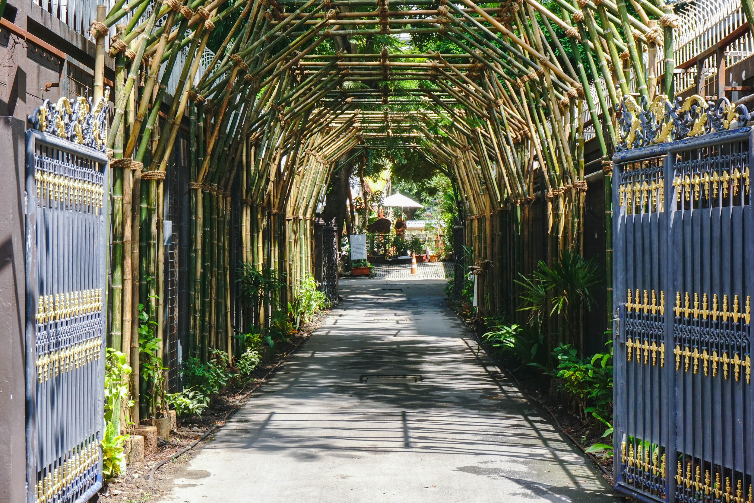 Openspace: The entrance of Bo.lan - a bamboo tunnel that purifies the air and clears pollution