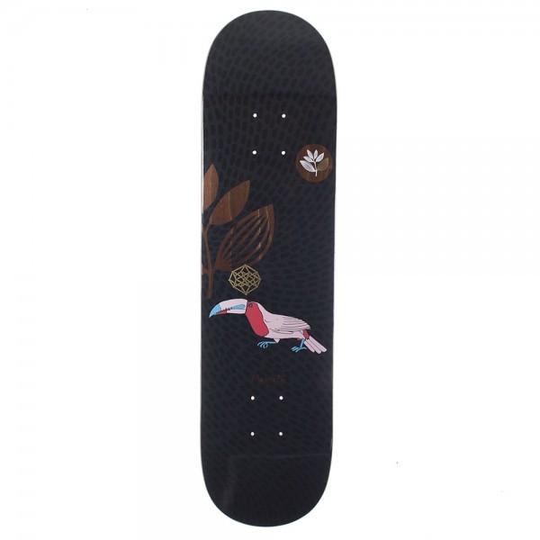 toucan-black-board.jpg