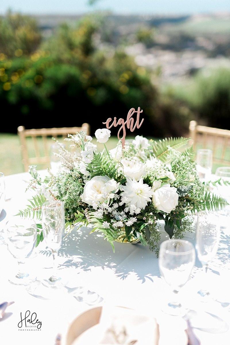 lauren-homer-wedding-566.jpg