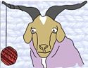 Cashmere Goat Photo 3.png