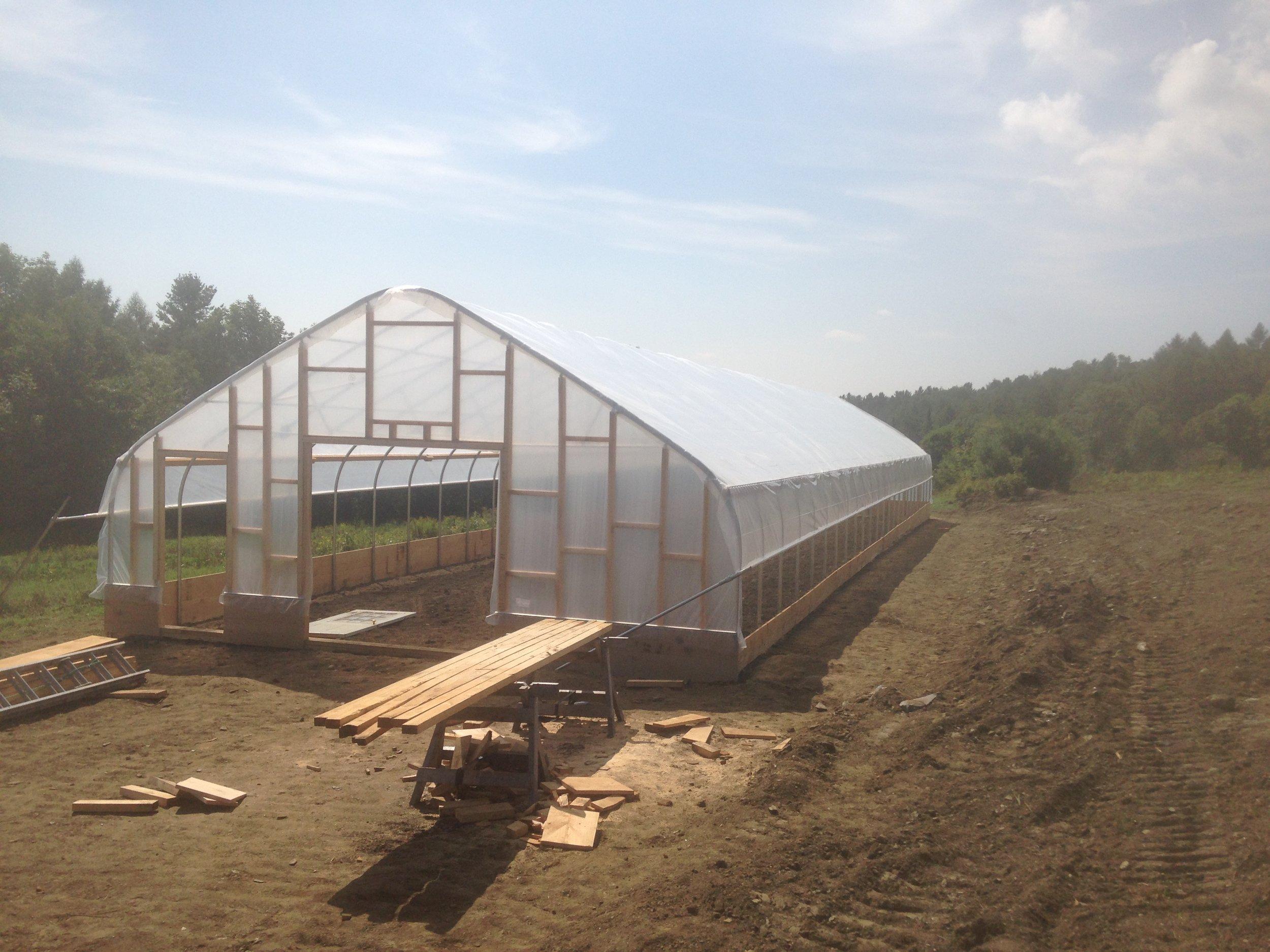 1000 Stone Farm