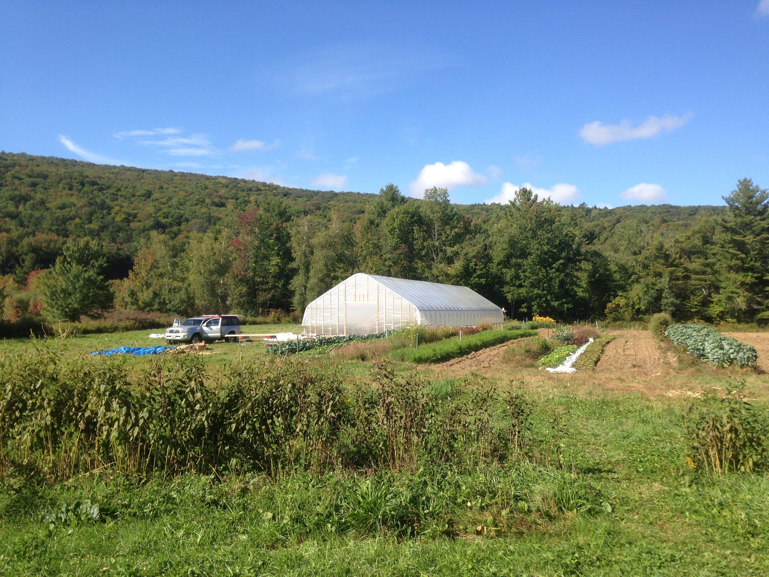 Footprint Farm View
